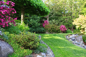 Manage Your Landscape to Attract Nice Creatures and Repel Bad Bugs