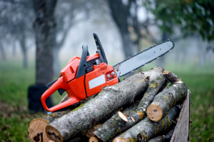 chainsaw-tree-pruning
